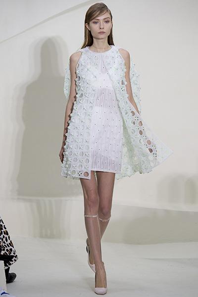 Fashion Fantasy-Paris-Fashion-Week-Spring-Summer-2014-7