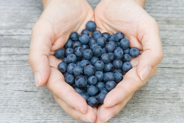blueberries-a-handful-of-health-1