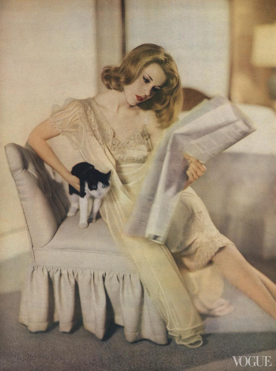 Fashion Cats In Vogue - Women Daily Magazine-5632