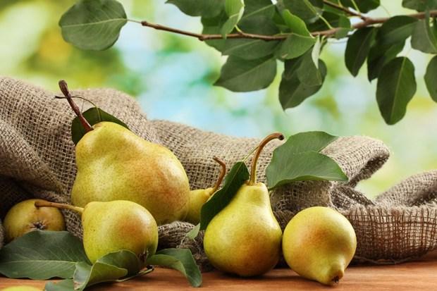 Fruit-for-health-3