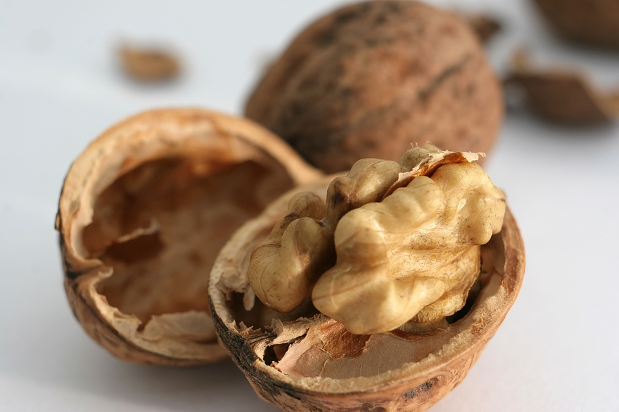 The-Miraculous-Health-Benefits-of-Nutshells-1