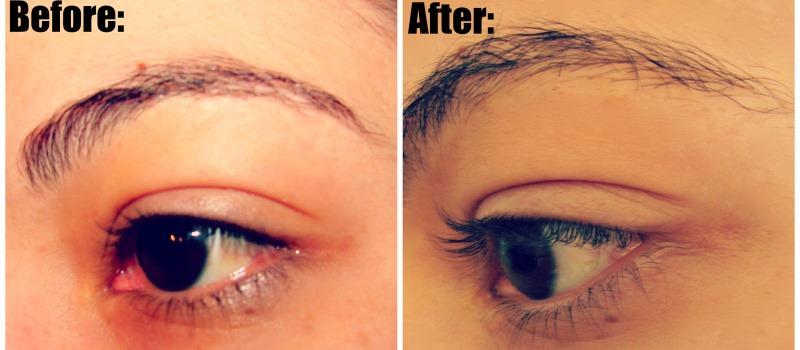 Castor oil for eyebrow growth yahoo dating