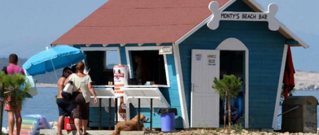first-beach-bar-for-dogs-croatia-better-serve-dogs-4